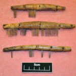 three-conserved-and-re-assembled-bone-hair-combs