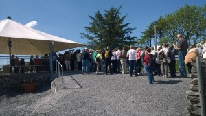Busy Day at the Caherconnell Sheepdog Demonstrations